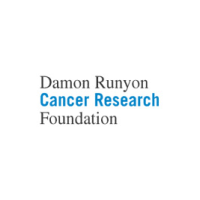 Damon Runyon Cancer Fund